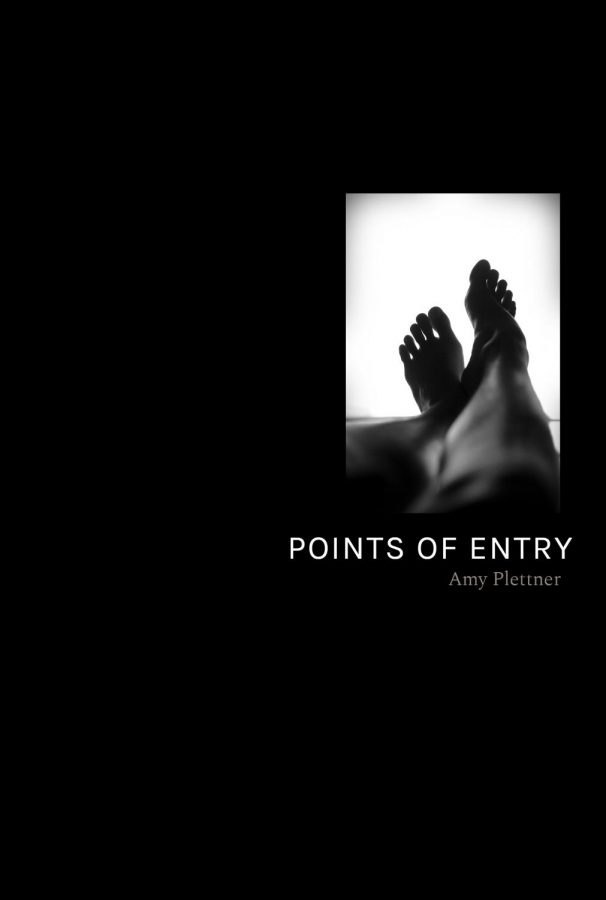Points of Entry by Amy Plettner
